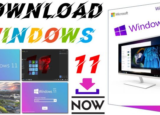 window 11 release date
