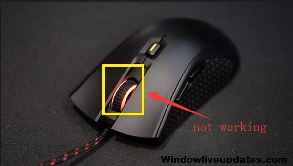 Middle mouse button not work