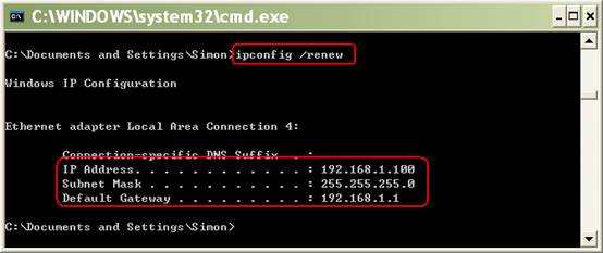 ipconfig / renew